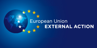 external action logo